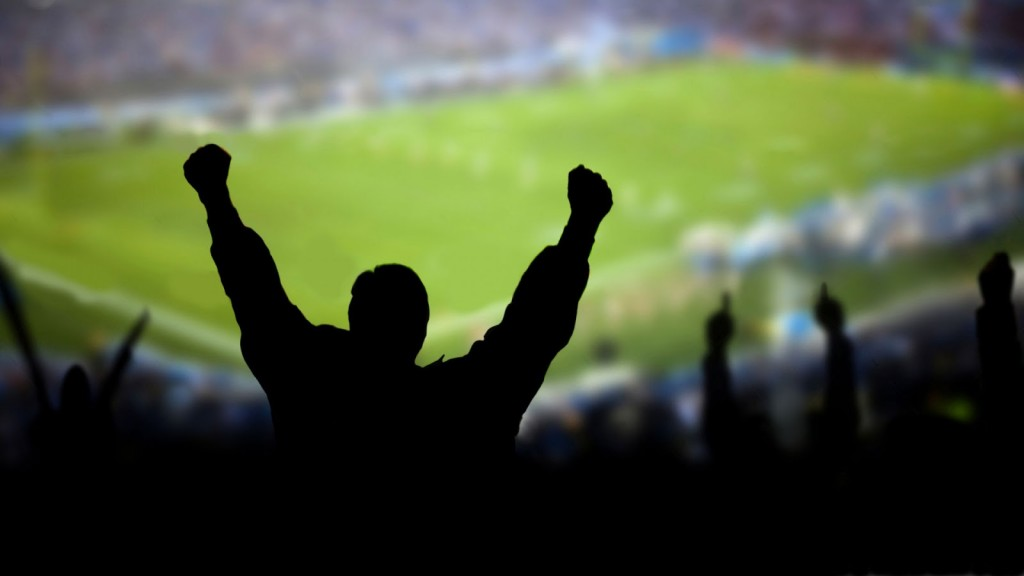 sports fan lions hub