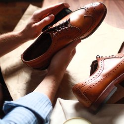 (c) Shoe Drop